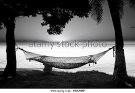 hammock black and white stock photos u0026 images alamy