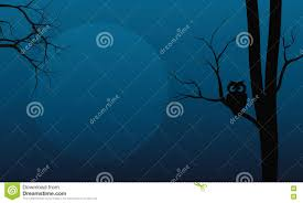halloween owl silhouette silhouette of owl in tree halloween stock vector image 72972371