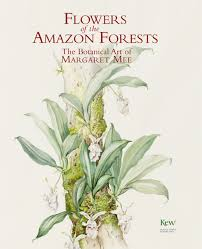 native plants in the amazon rainforest flowers of the amazon forest the botanical art of margaret mee