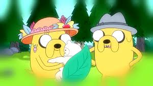 adventures of the little koala finn u0027s relationships adventure time wiki fandom powered by wikia