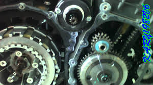 tiger 1050 clutch repair youtube
