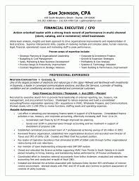 professional chief financial officer resume template 100 vp