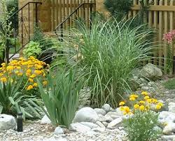 91 best gardening rock gardens images on pinterest garden