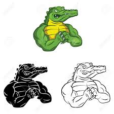 gator images u0026 stock pictures royalty free gator photos and stock