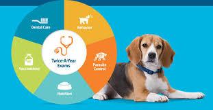 Pet Veterinarians Banfield Pet Hospital Provides Superior Pet