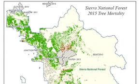 california map drought maps california drought effects on trees