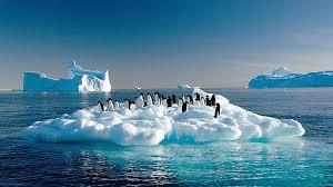 imagenes de la antartida de quién es la antártida globalizacion org d3e claes