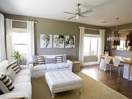 Terrific Living Room And Dining Room Color Combinations  For - Living room color