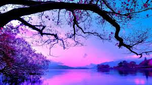 30 purple tree wallpaper pictures