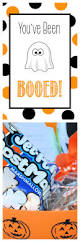 halloween party game ideas 46 best you u0027ve been boo u0027d images on pinterest holidays halloween