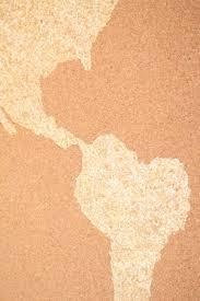 World Map Cork Board by Diy World Map Cork Board