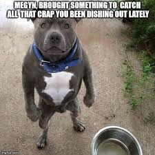 Bad Dog Meme - bad dog meme generator imgflip