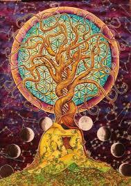 imagenes whatsapp mandalas mandalas con árboles de la vida diseños y tatuajes mandalas