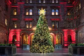 christmas trees preston christmas lights decoration