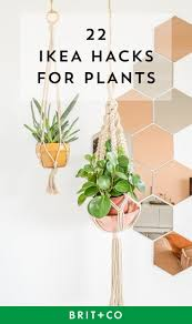 Ikea Plant Ideas by 268 Best Gardening Images On Pinterest Flowers Garden Potted