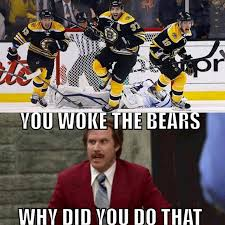 Bruins Memes - boston bruins dontpokethebear btw the facial expressions are