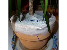 chasser les moucherons dans la cuisine comment lutter et se débarrasser des mouches ou moucherons des