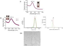 xanthan gum stabilized pegylated gold nanoparticles for improved
