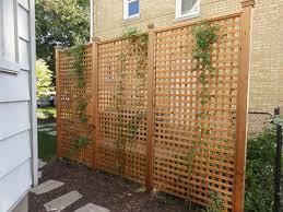 Backyard Privacy Screens Trellis 150 Best Lattice Decorating Ideas Images On Pinterest Backyard