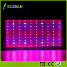apollo power and light china 1000w high power full spectrum apollo panel led grow light for