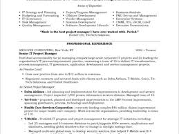project manager sample resumes sample resumes for project management project management resume