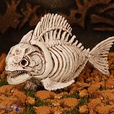 halloween skeleton images halloween skeleton dead fish pirana piranha horror decoration prop