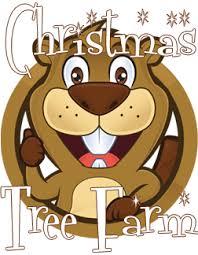 beavers christmas tree farm beavers christmas tree farm