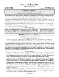 free resume template pdf 10 ceo resume templates free word pdf