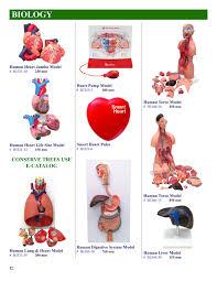 Heart External Anatomy Biology Models B3321 10 Human Heart Jumbo Model Mansion Schools