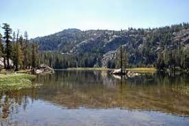 caples lake area cing
