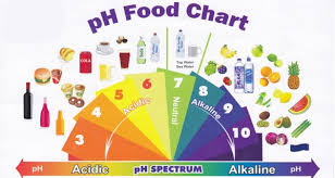 the ultimate guide to an all alkaline diet with comprehensive