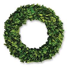 napa home garden 12 inch preserved boxwood wreath
