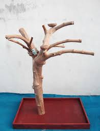 java wood activity trees for parrots