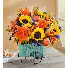 tulsa ok florist absolutely flowers and gifts shop