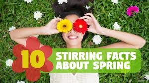 strange facts about thanksgiving 43 stirring facts about spring factretriever com