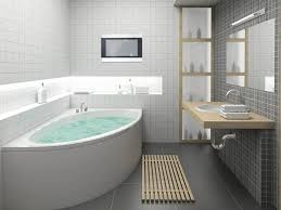 Luxury Bathroom Decorating Ideas Colors 230 Best All Kinds Of Bathrooms Images On Pinterest Dream