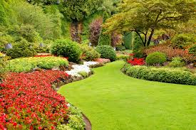 backyard landscaping ideas archives decarlo landcaping contractors