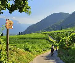 europe bicycling and walking tours with vbt