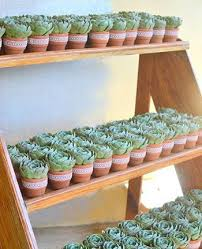 best 25 plant wedding favors 25 best wedding philippines images on philippines the