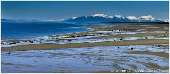 Alaska travel weather images Sandy beaches near gustavus alaska alaska365 jpg