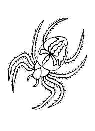 spider coloring pages spider coloring