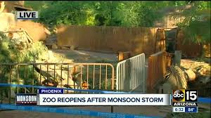 Phoenix Zoo Map by Phoenix Zoo Reopens After Storm Damage Clean Up All Animals Safe