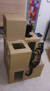 Design Your Own Dog Toy Boxes by Best 25 Cardboard Cat House Ideas On Pinterest House Of Cat