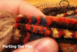 Do Rug How Do You Eliminate Oriental Rug Moth Infestation