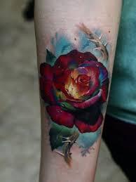 pin by lieuwe folkertsma on rozen