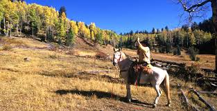 New Mexico nature activities images Recreation new mexico department of game fish jpg