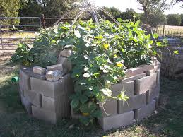 Garden Raised - keyhole gardens can maximize growing space and make harvesting