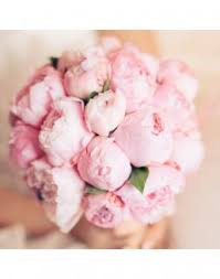 Peonies Delivery Peonies Delivery And Order Flowers Price From 25900tg In Rudniy