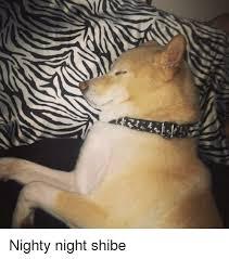 Nighty Night Meme - shibe and shibe meme on conservative memes