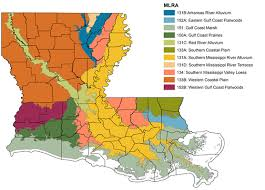 louisiana map areas an overview of louisiana soils